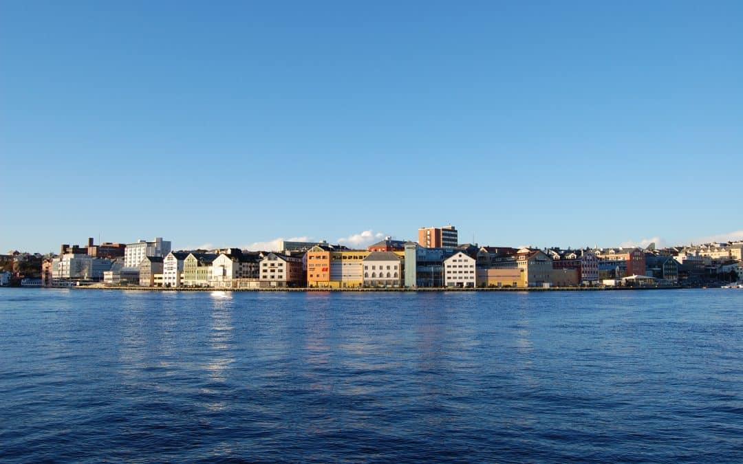 Skadedyrkontroll Kristiansund – pris – skadedyrfirma 🥇